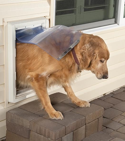 Dog Door - Tashman Home Center - Los angeles