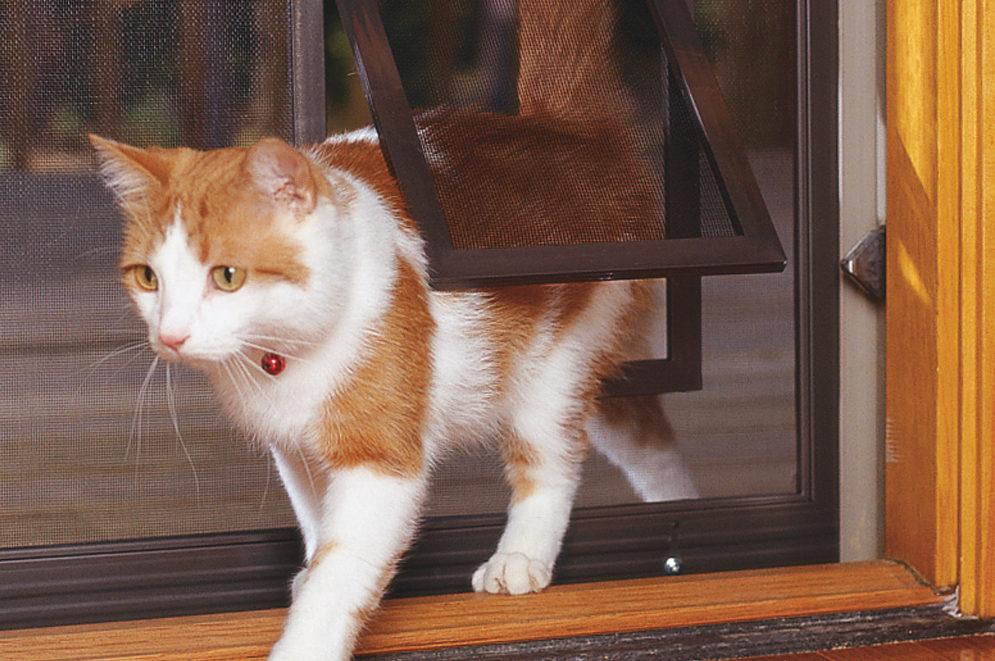 Pet Screen Door for Cats